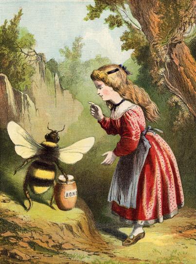 abelha-empatia